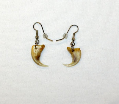 lynx Claw Earrings E-121