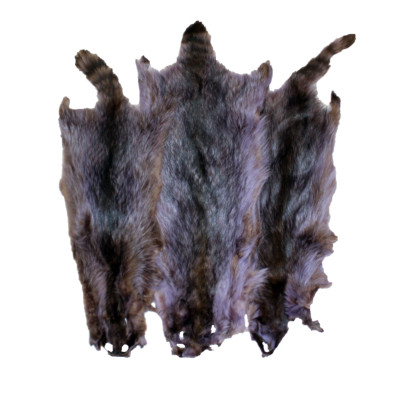 RACCOON PELT - INDIGO DYED