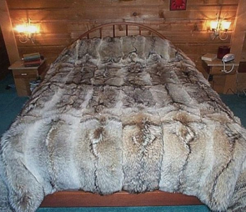 Glacier Wear Coyote Fur Comforter For Sale