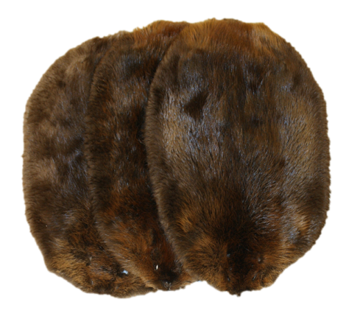 Northern Beaver Pelts For Sale