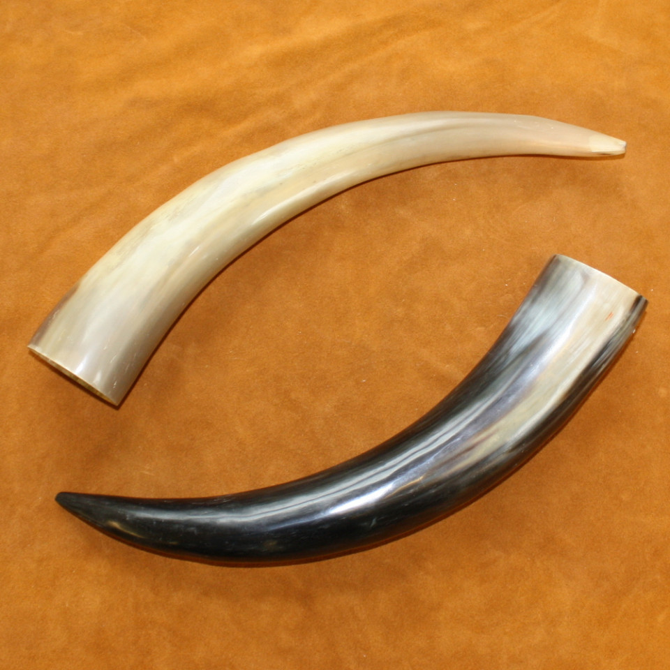 Glacier Wear Polished Buffalo Horn Caps For Sale