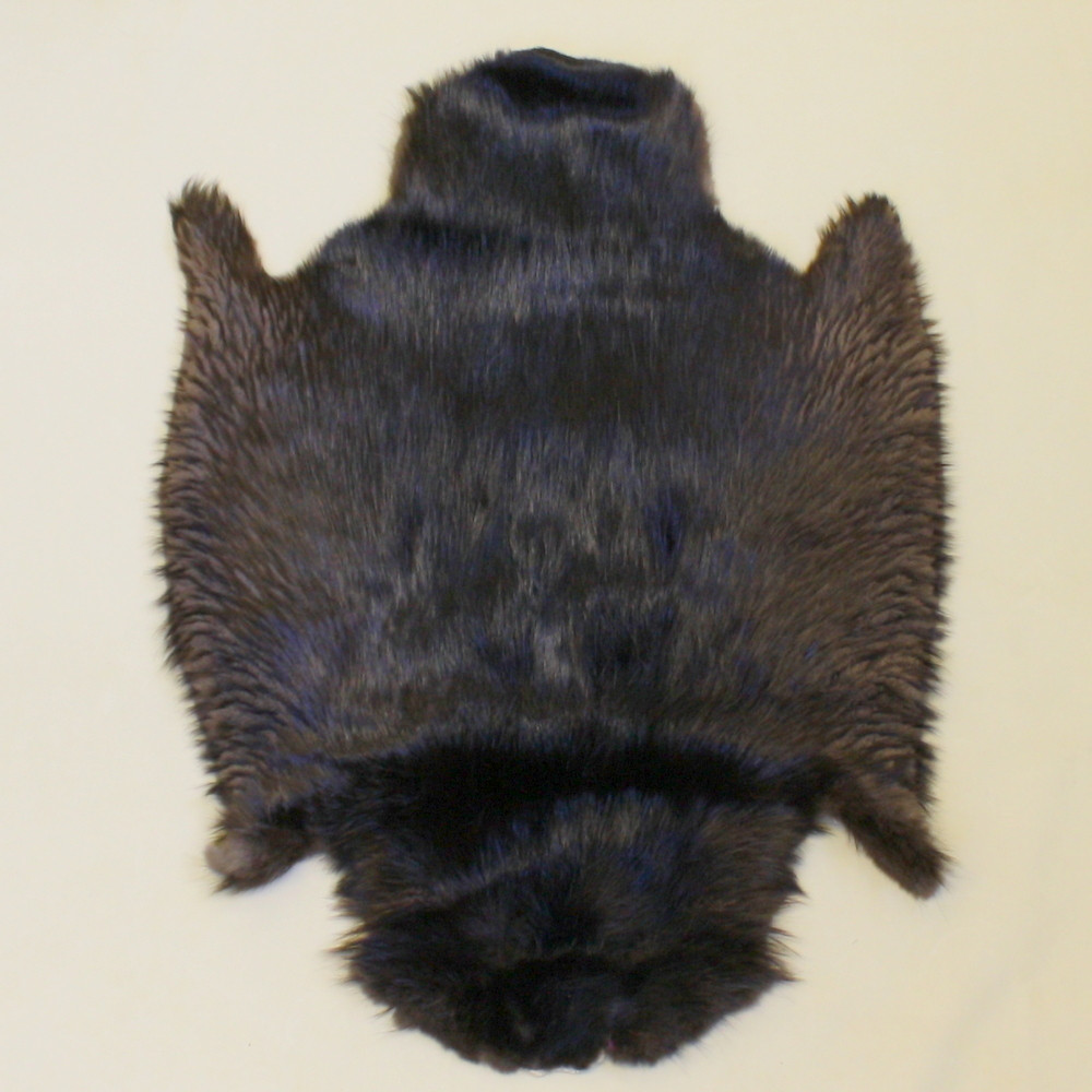 Natural Black Beaver Pelts For Sale