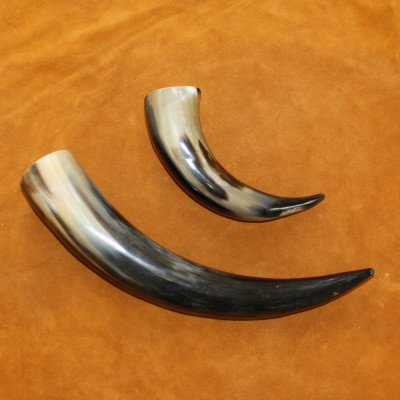 POLISHED BUFFALO HORN CAPS