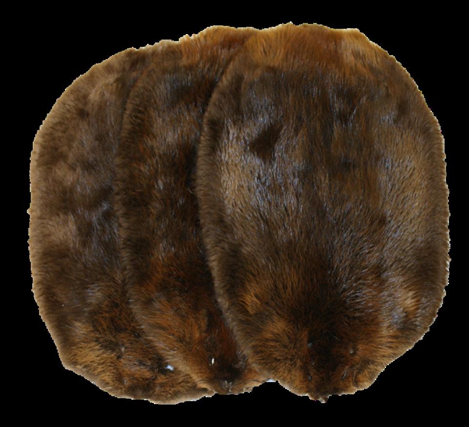 Glacier Wear Northern Beaver Pelts For Sale